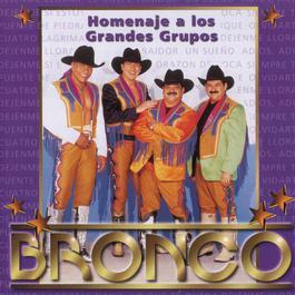 Homenaje A Los Grandes Grupos 2008 Bronco