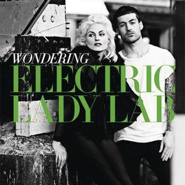 Wondering 2011 Electric Lady Lab