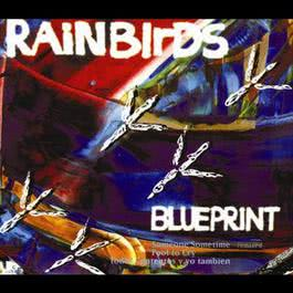 Blueprint 2007 Rainbirds