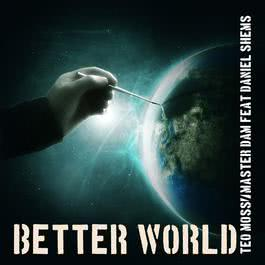 Better World 2009 Daniel Shems