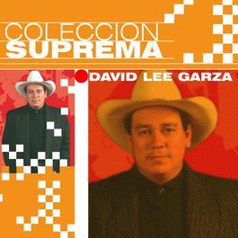 Coleccion Suprema 2007 David Lee Garza