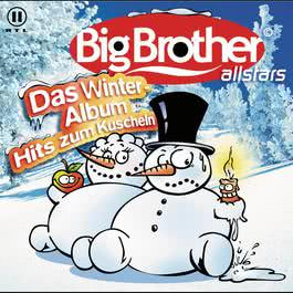 Das Winteralbum 2004 Various Artists