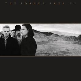 The Joshua Tree 2007 U2