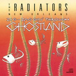 Zig-Zaggin' Through Ghostland 1989 The Radiators