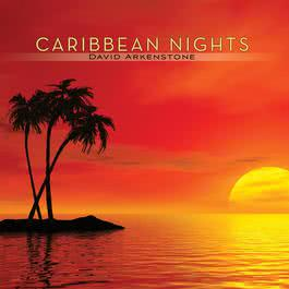 Caribbean Nights 2009 David Arkenstone