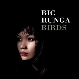 Birds 2006 Bic Runga
