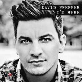 I'm Here 2011 David Pfeffer
