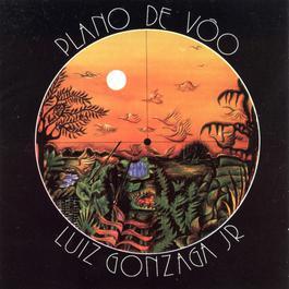 Plano De Voo 2005 Luiz Gonzaga