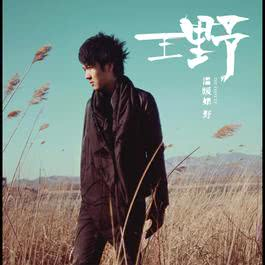 温暖如野 2011 Wang Ye