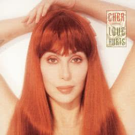 Love Hurts 1991 Cher