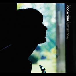 Wild Wood 2007 Paul Weller