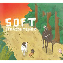 Soft 2012 STRAIGHTENER