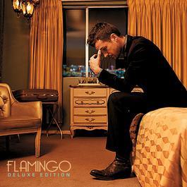 Flamingo 2010 Brandon Flowers