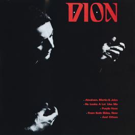 Dion 2007 Dion