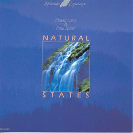 Natural States 1985 Dvid Lanz