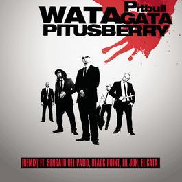 Blanco 2009 Pitbull