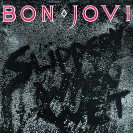 Slippery When Wet 2010 Bon Jovi