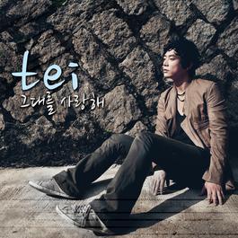 I love you 2010 Tei