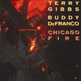 Chicago Fire 1987 Terry Gibbs