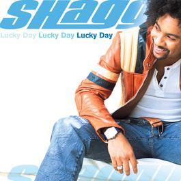 Lucky Day 2002 Shaggy
