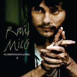 Flamenco En La Piel 2011 Raul Mico