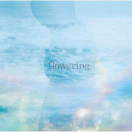 Flowering 2012 Toru Kitajima