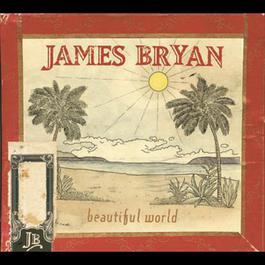 Beautiful World 2005 James Bryan