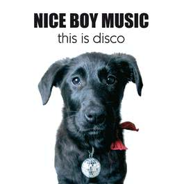 This Is Disco 2006 Nice Boy Music