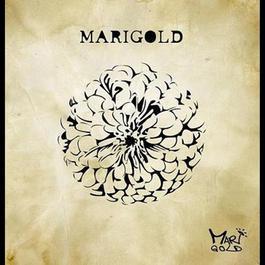 Marigold 2009 Marigold