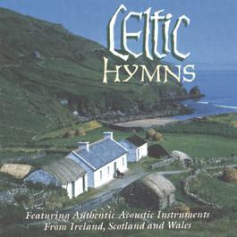 Celtic Hymns 2010 Studio Musicians