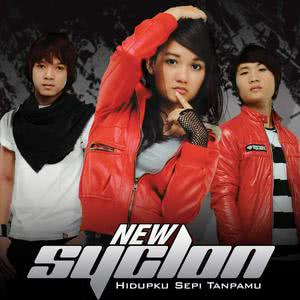New Syclon