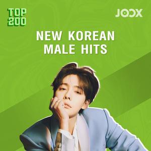New Korean Hits (Male)