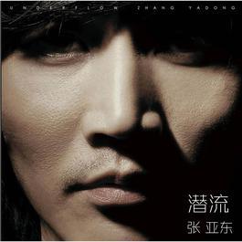 潛流-張亞東作品集 2009 张亚东