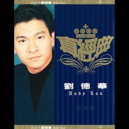 Zhen Jin Dian-Andy Lau 2001 Andy Lau (刘德华)
