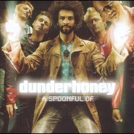 A Spoonful Of Dunderhoney 2000 Dunderhoney