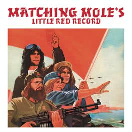 Little Red Record 2012 Matching Mole