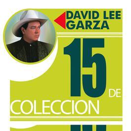 15 De Coleccion 1991 David Lee Garza