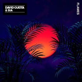 Flames 2018 David Guetta; Sia