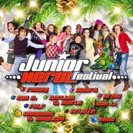 Junior Kerst Festival 2009 2009 Finalisten Junior Songfestival 2009
