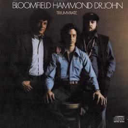 Triumvirate 1989 Mike Bloomfield; John Paul Hammond