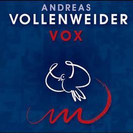 VOX 2004 Andreas Vollenweider