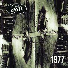 1977 2009 Ash(爱尔兰)