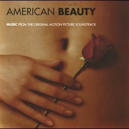 American Beauty 1999 American Beauty