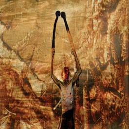 Son Of Sulphur 2005 Crowpath