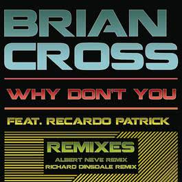 Why Don't You (Remixes) 2011 Brian Cross