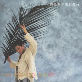 Da An Jiu Shi Ni 2014 Andy Lau (刘德华)