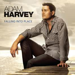 Falling Into Place 2011 Adam Harvey