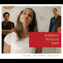 Kapcsolatok 2008 Budapest Acoustic Band