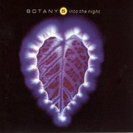 Into The Night 1991 Botany 5