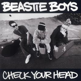 Check Your Head 1992 Beastie Boys